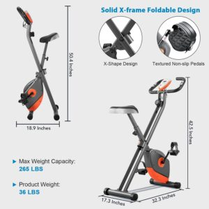 BLH Exercise Bike with Magnetic Resistance X Frame
